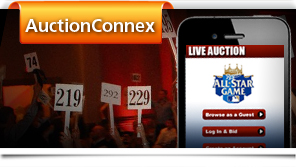 AuctionConneX